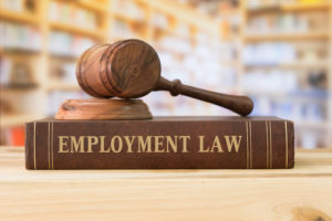 employment law attorney haddonfield nj